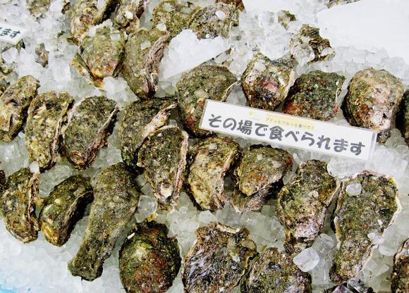 天然岩カキ.JPG